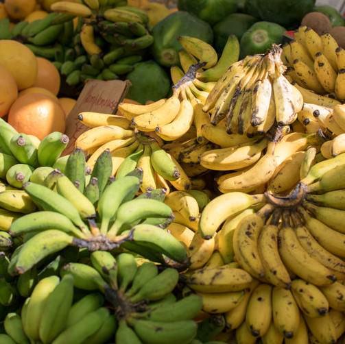 Bananen, zijn het dikmakers?