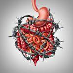 Prikkelbare Darm Syndroom, de eetlijn