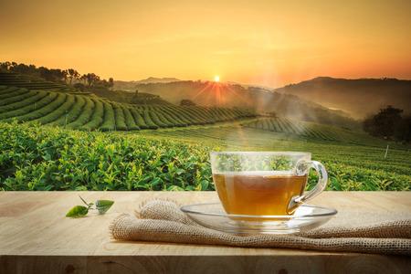 Groene thee en 7 gezondheidsbevorderende eigenschappen