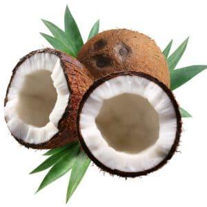Kokos, De EetLijn