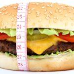 Broodje hamburger, De EetLijn