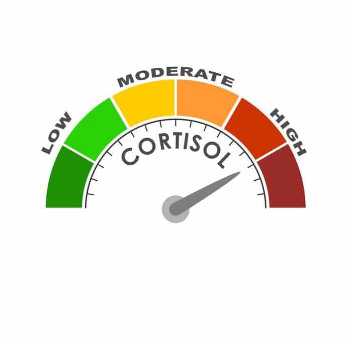 Cortisol, een levensnoodzakelijk hormoon! Maar hoe houd je het in balans?