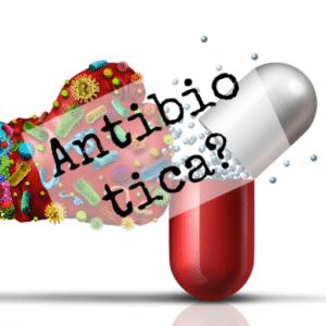 Antibiotica, De EetLijn